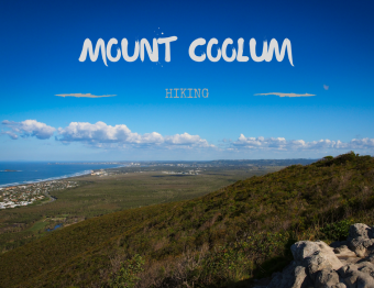 Climbing Mount Coolum… Queensland's 10,000 steps