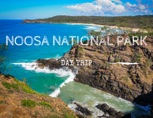 Winter is glorious in Noosa National Park