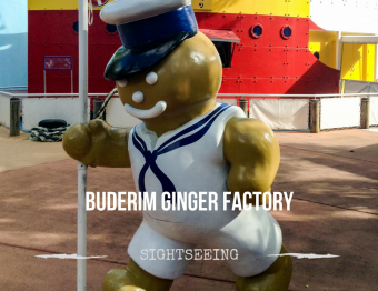 Tasting ginger at the Buderim Ginger Factory
