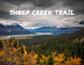 Hiking in Kluane: Magical Sheep Creek Trail