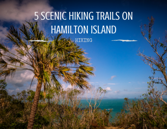 Hiking Hamilton Island: 5 scenic trails
