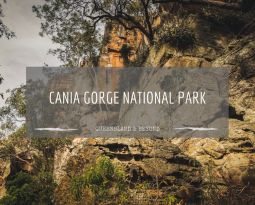 What to do at Cania Gorge National Park