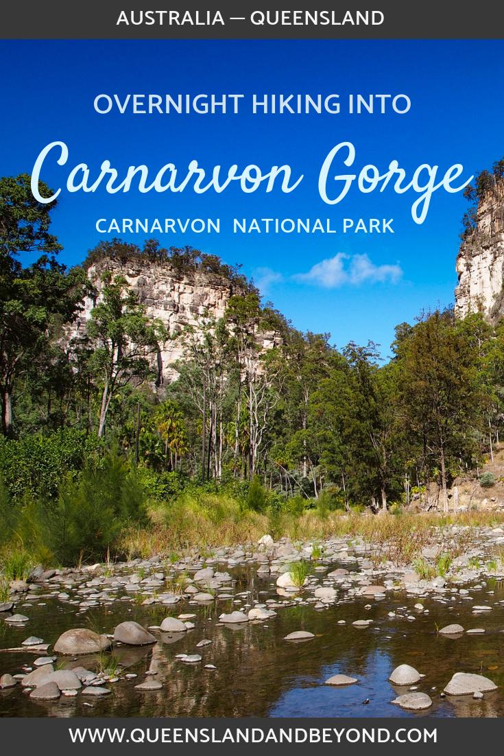 Hiking Carnarvon Gorge, Carnarvon National Park