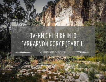 Carnarvon Gorge: Part 1 (Sandstone Belt road trip)