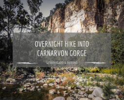 Hiking into Carnarvon Gorge (Carnarvon National Park)