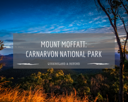 A guide to Mount Moffatt (Carnarvon National Park)