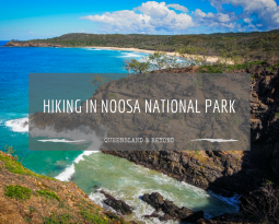 Winter hiking the Coastal Track in Noosa National Park