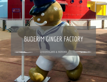 All About Ginger at the Ginger Factory