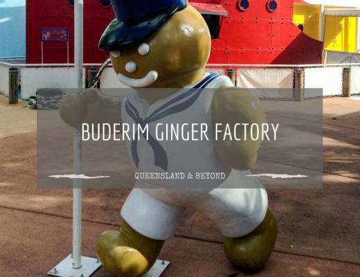 Tasting ginger at the Buderim Ginger Factory