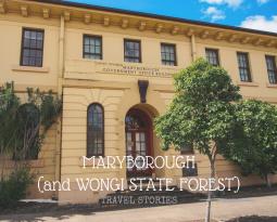 Quick dash through Wongi State Forest & Maryborough