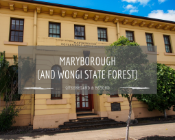 Quick dash through Wongi State Forest & Maryborough