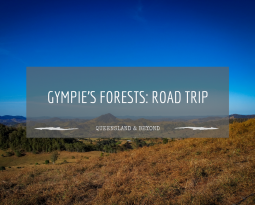 Trying to find something exciting in Gympie's forests