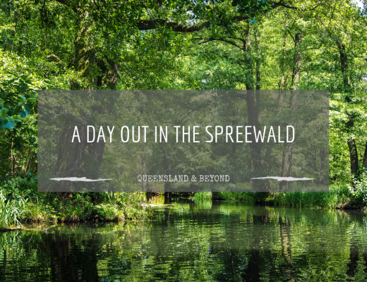 Exploring Brandenburg: A day out at the Spreewald