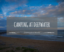Deepwater National Park: Camping Review