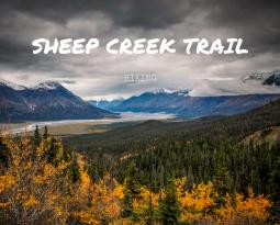 Hiking in Kluane: Magical Sheep Creek Trail