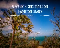 Hiking Hamilton Island: 5 scenic trails