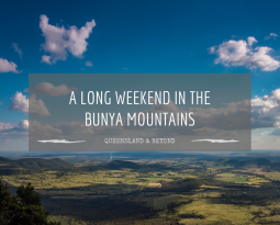 5 fabulous things to do at Bunya Mountains