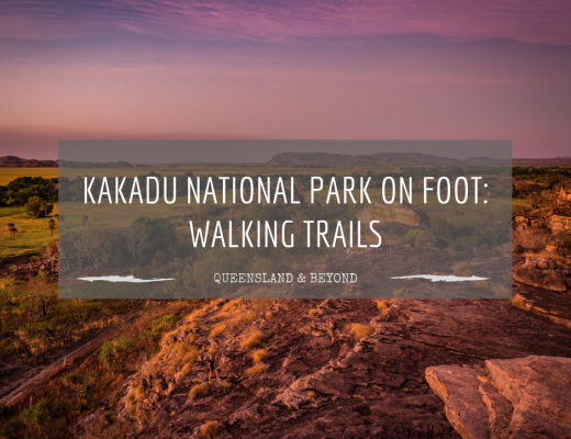 Exploring Kakadu National Park: Walking trail ideas