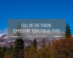 Call of the Yukon: Tombstone Territorial Park