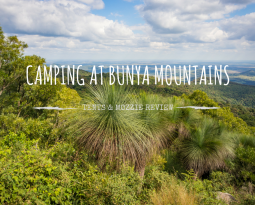 Camping at Bunya Mountains: Review