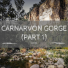 Carnarvon Gorge: Part 1 (Sandstone Belt road trip)