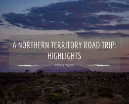 Highlights from a Northern Territory road trip