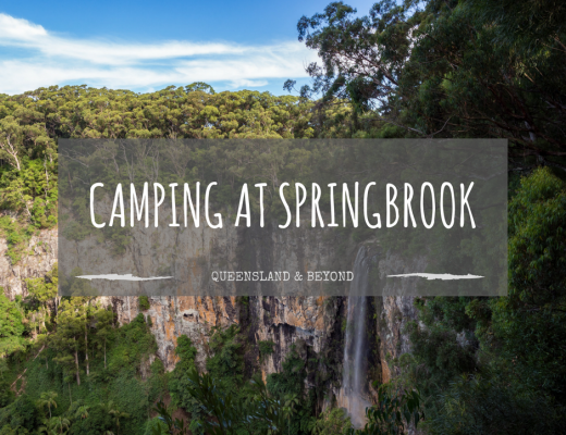 Springbrook National Park: Camping Review