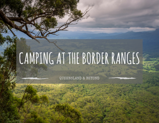 At the Border Ranges: Camping Review