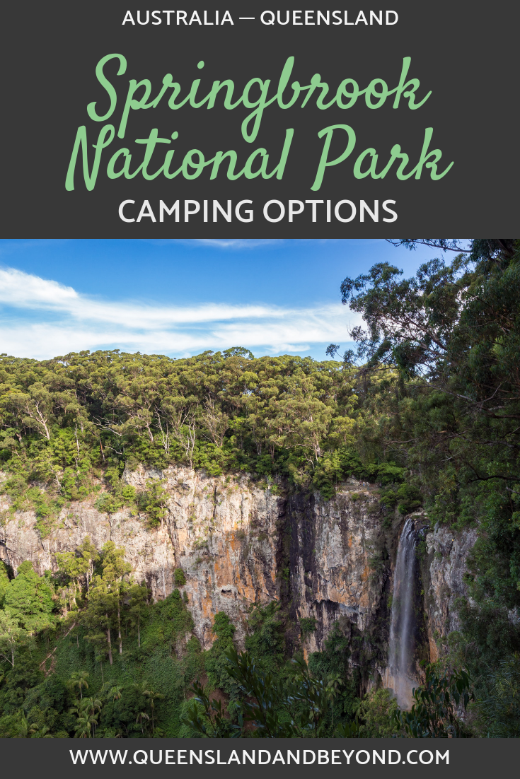 Camping options at Springbrook National Park