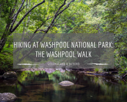 Hiking the Washpool Walk in Washpool National Park