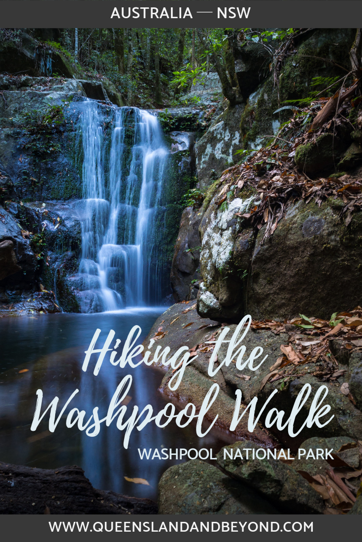 Hiking in Washpool National Park