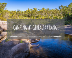 Gibraltar Range National Park: Camping Guide