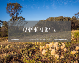 Idalia National Park: Camping Guide