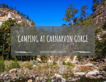 A Quick Carnarvon Gorge Camping Guide