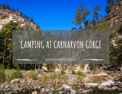 A Quick Carnarvon Gorge Camping Guide