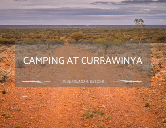 Currawinya National Park: Camping Guide