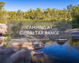 Gibraltar Range National Park: Camping Guide