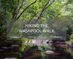 Hiking the Washpool Walk in Washpool National Park