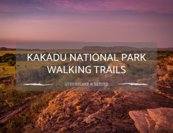 Exploring Kakadu National Park: Walking Trail Ideas