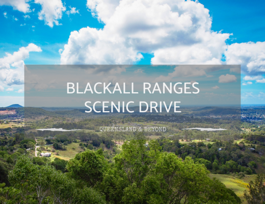 How to do a Scenic Drive in the Blackall Ranges